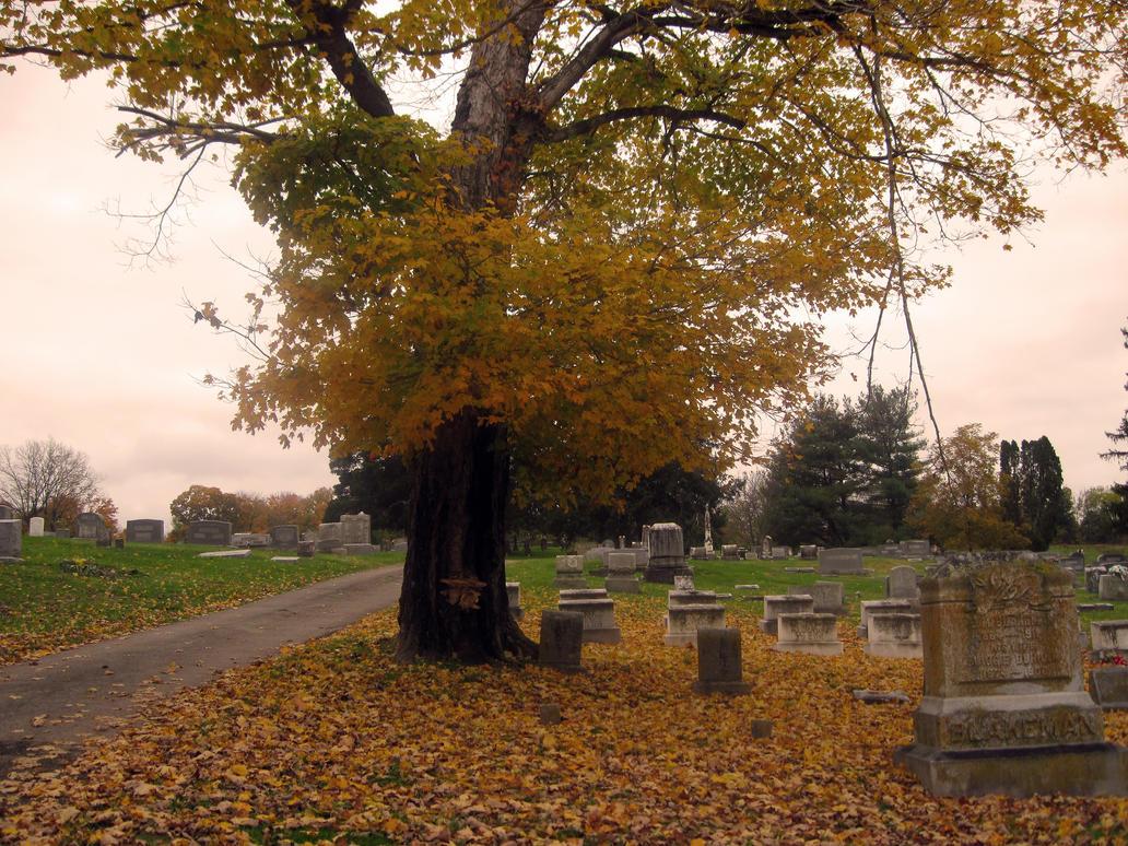 October Graveyard by Mistshadow2k4