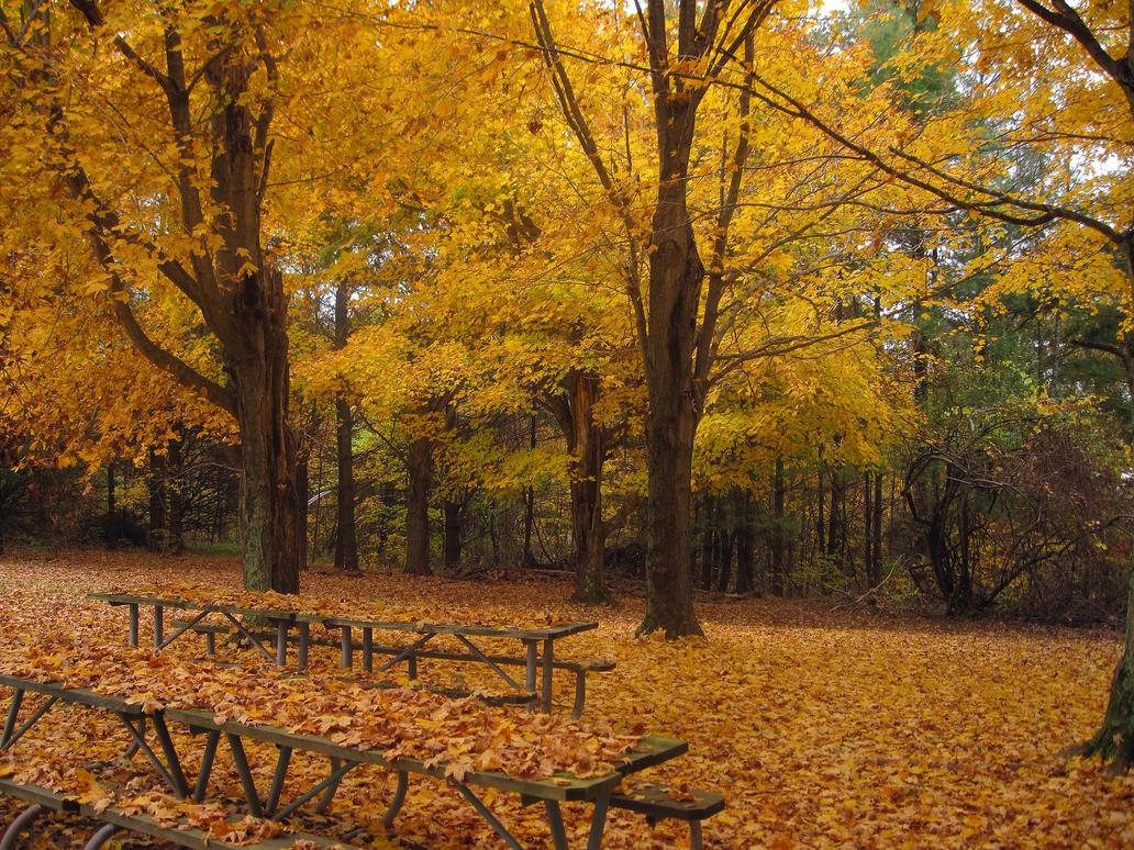 Forgotten Park by Mistshadow2k4