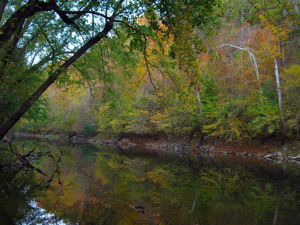 Riverside Color by Mistshadow2k4