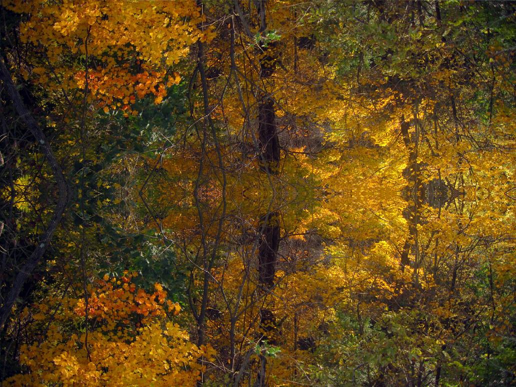 Fall Kaleidoscope II by Mistshadow2k4