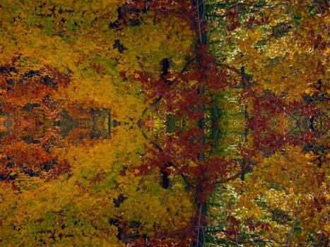 Fall Kaleidoscope I