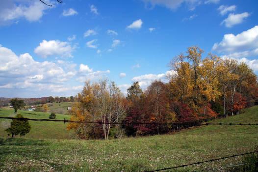 Rural Autumn Charm IV