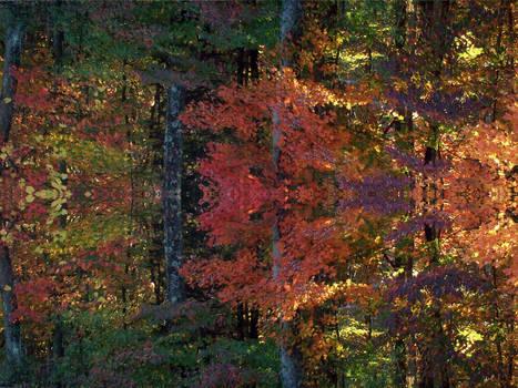Kentucky Autumn Texture