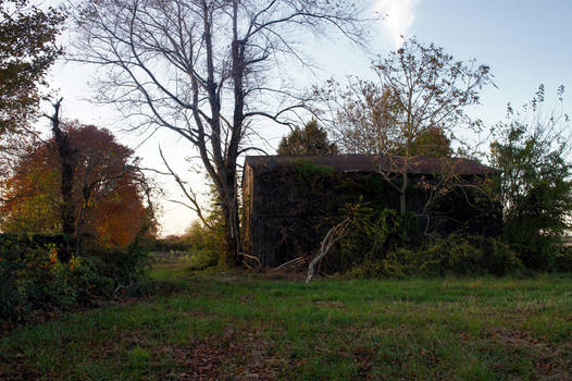 Tobacco Barn Revisited