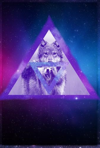 Galaxy Wolf Tumblr By LizzyWolfFire6 On DeviantART