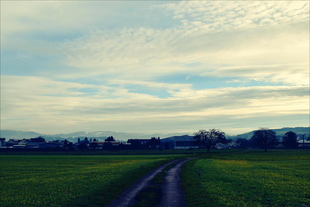 Today Morning by Aenea-Jones