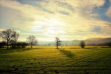 Radiant Light by Aenea-Jones