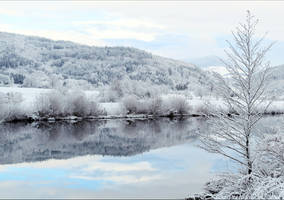 Reflect by Aenea-Jones