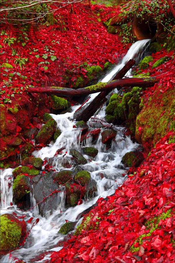 Little Waterfall by Aenea-Jones