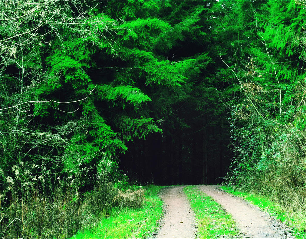 Into the Dark by Aenea-Jones