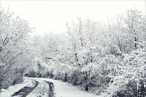Snowland II by Aenea-Jones