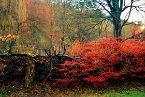 Autumn Days by Aenea-Jones
