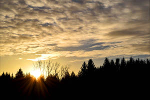 Dawn by Aenea-Jones