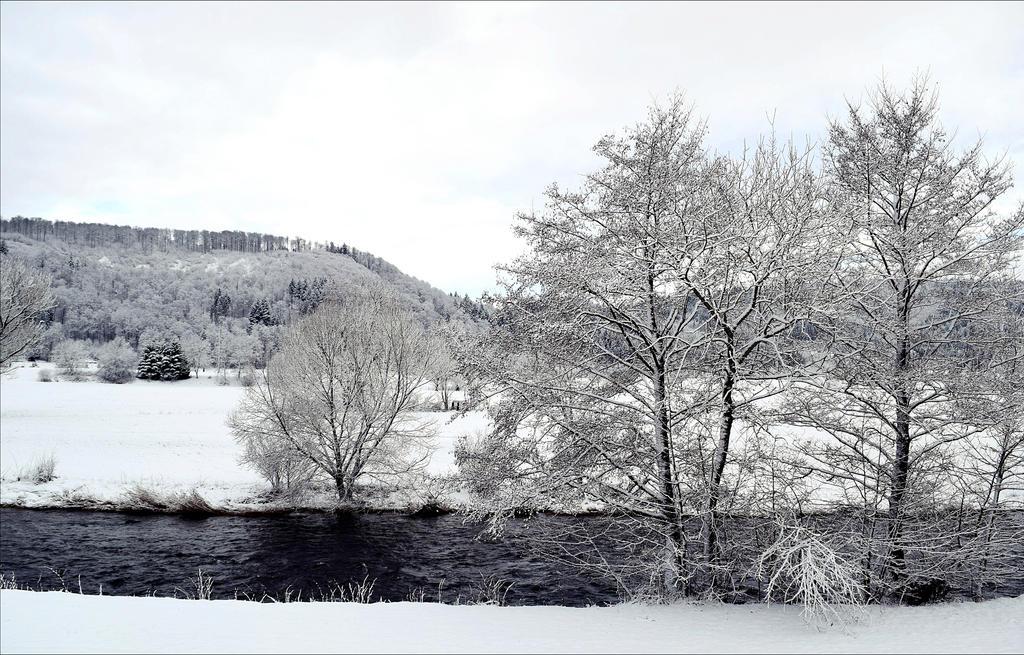 By the River III by Aenea-Jones