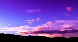 Skyward Dreams