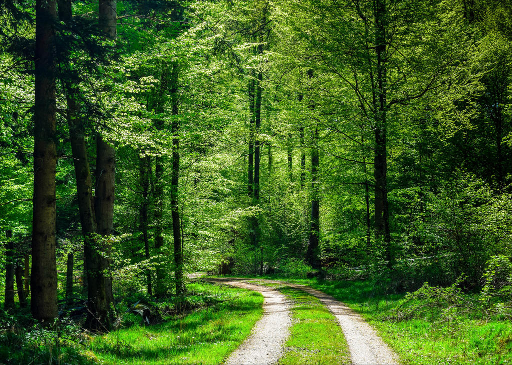 The World is Green IV by Aenea-Jones