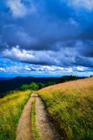 Over the Fields by Aenea-Jones