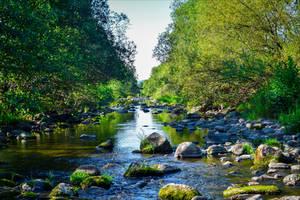 Where the River flows by Aenea-Jones