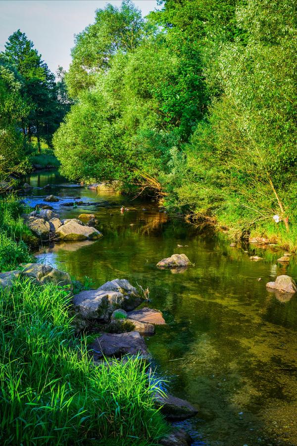 Where the River flows II by Aenea-Jones