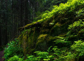 A Place for Faeriefolk II