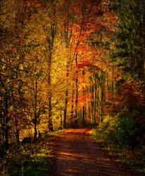 Autumn remembrance II by Aenea-Jones