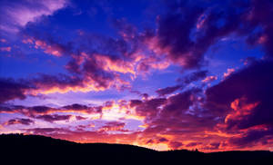 Skyward Dreams IX by Coccineus