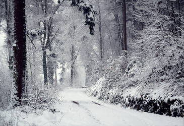 Eternal Winter II