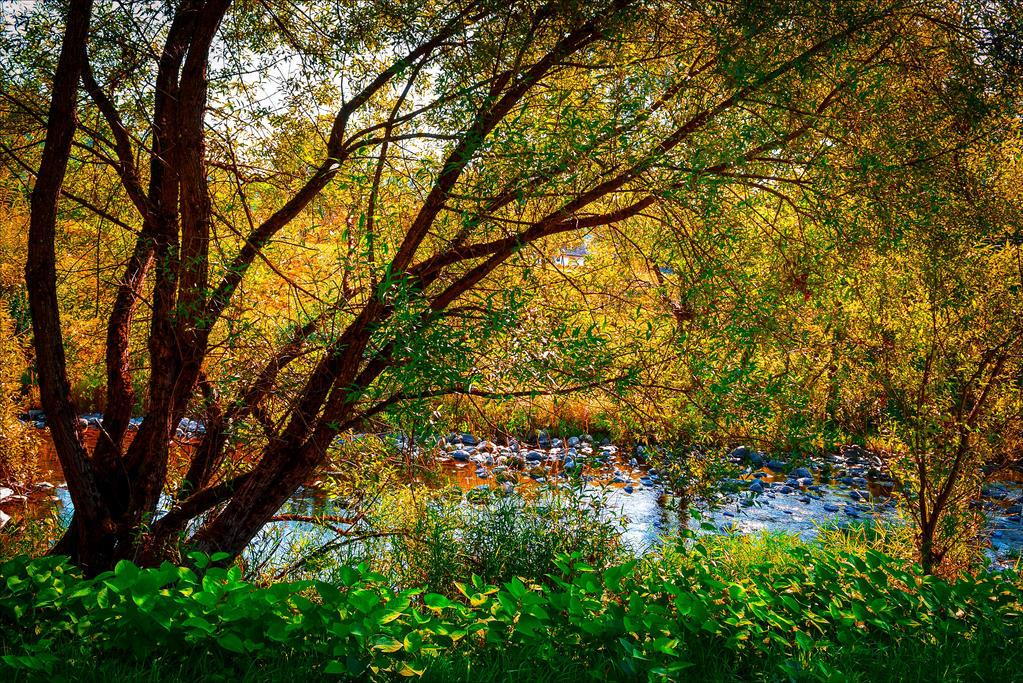 River flowing, nostalgia growing V by Aenea-Jones