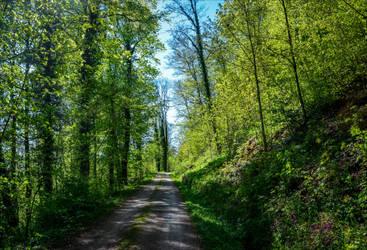 The World is Green VIII by Aenea-Jones