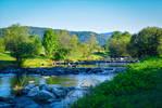 Where the River flows VI