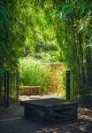 Zen Resting Place