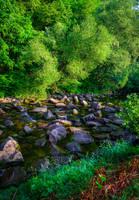 Where the River flows VIII by Aenea-Jones
