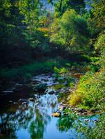 Where the River flows IX by Aenea-Jones
