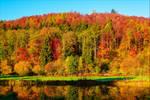 Autumn Glory II