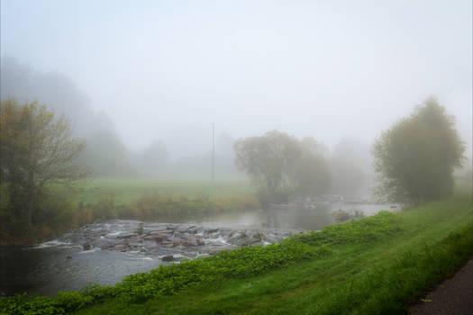 Foggy Morning XVIII