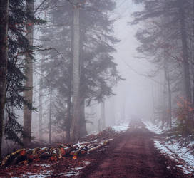 A lonely path into the Unknown.