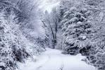 Eternal Winter III