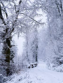 Eternal Winter IV