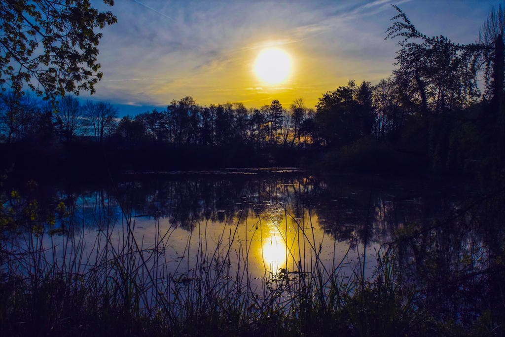 Dark Rising by Aenea-Jones
