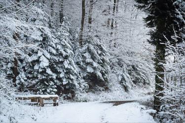 Eternal Winter VI by Aenea-Jones