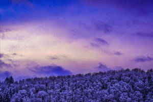 Winter Sunset by Aenea-Jones