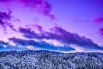Winter Sunset II