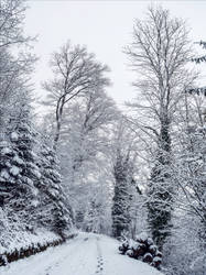 Eternal Winter VII