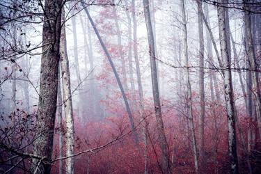 Ominous Tranquility IV by Aenea-Jones