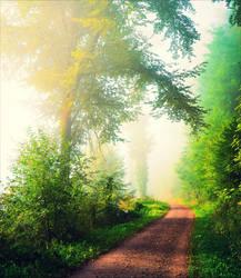 Foggy Morning II v2.0 by Aenea-Jones