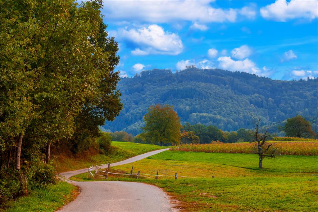 Country Trail III by Aenea-Jones