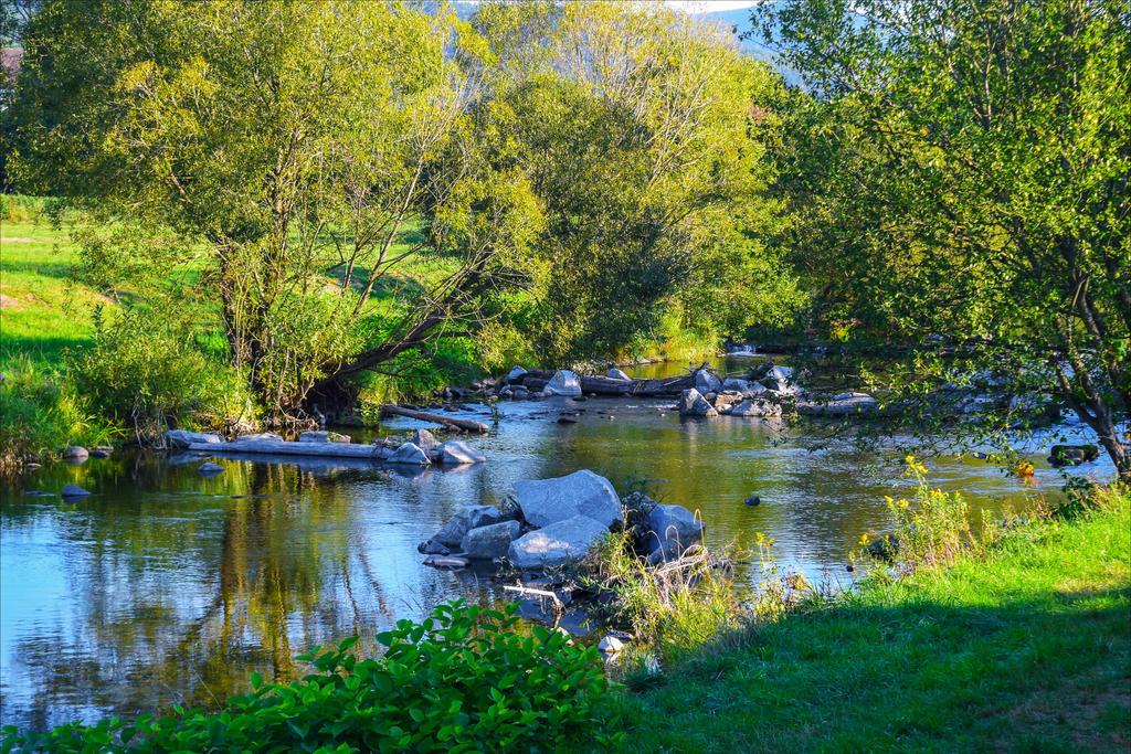 Where the River flows XIII by Aenea-Jones
