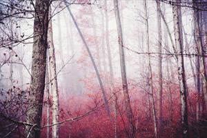 Ominous Tranquility IV v2.0 by Aenea-Jones