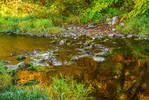 Golden Water III