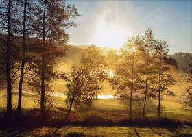 Golden Morning IV by Aenea-Jones